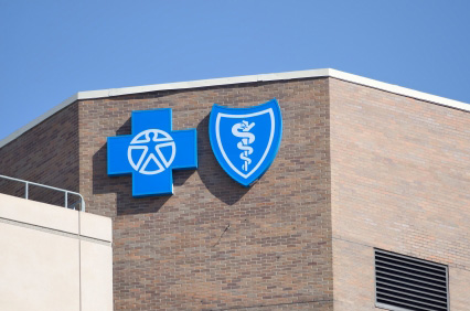 blue cross changes