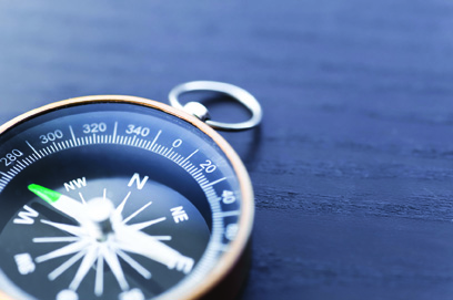 Navigating the Audit Appeal Process