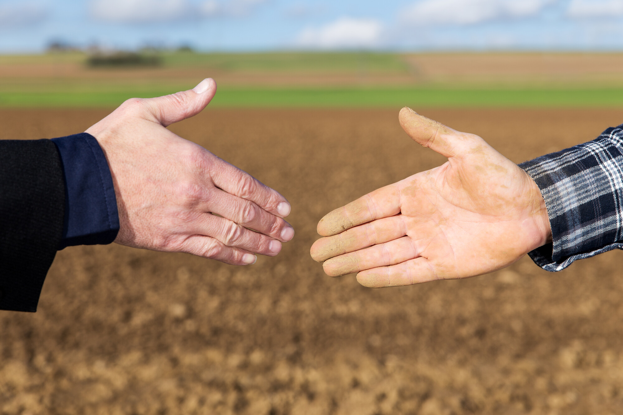 Verbal Agreement Handshake